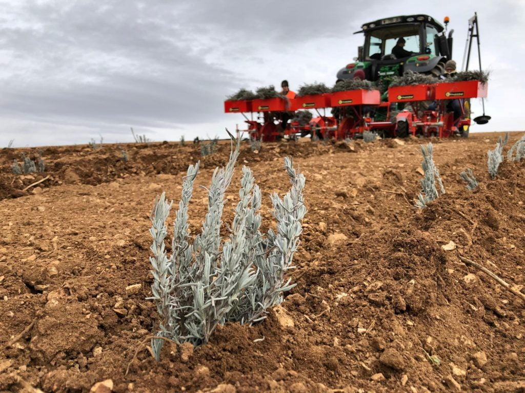 Checchi e Magli Macchine Agricole